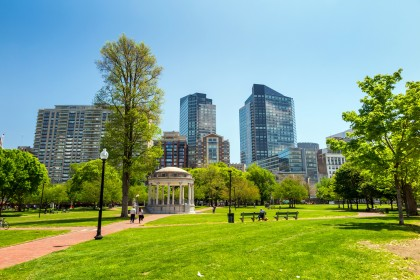 W jaki sposób utrzymać miejski obszar zieleni w czystości?